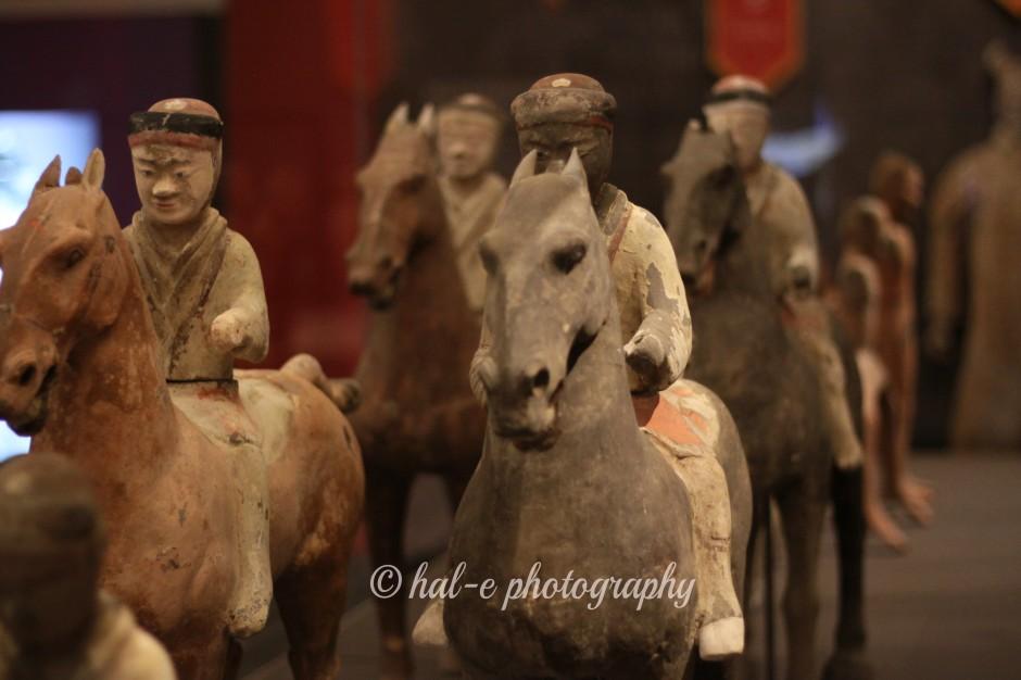 TW on Horses