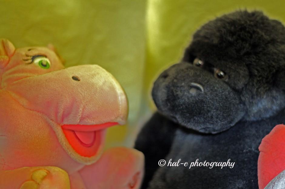 IMG_0257.Love ape and hippo